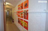 Школа 9 залов, фото №4