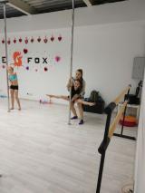 Школа THE FOX, фото №1